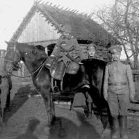Сибирские казаки
