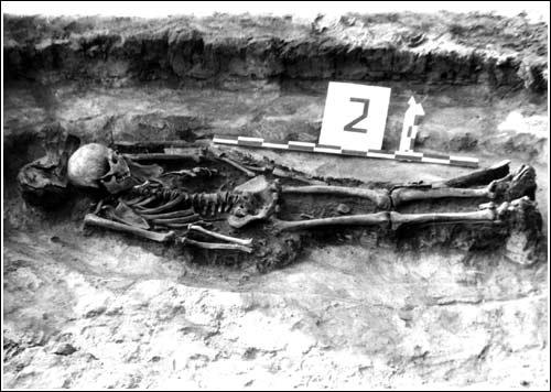 Погребение с остатками лука могилы № 2 могильника Монашка
