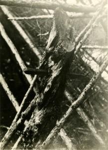 Изображение предка в шаманском чуме Хинкорчи, ККМ 4660-8