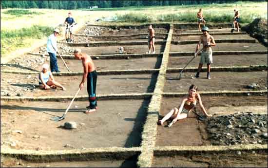 Рис. 2. Общий вид раскопа 2000 г. (юго-восточный угол двора острога)