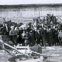Сибирские кооператоры