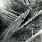 Щуки «гуткон», ККМ 4460-4